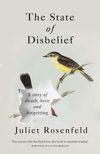 The state of disbelief by Juliet Rosenfeld